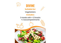 Divine Fresh Vegetarian Meal Plan Company in Dubai, Abu Dhabi, UAE