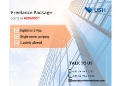 Pay AED6000/year - License with 3 years Visa