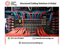 Professional Structured Cabling Solution Providers in Dubai