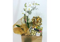Corporate Gifts Basket   Corporate Gifts Items for Employees   Richrose